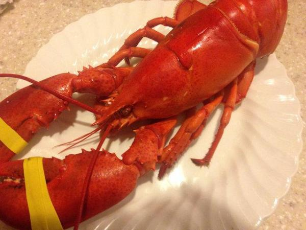 25th annual southold greenport rotary lobsterfest set for for Southold fish market