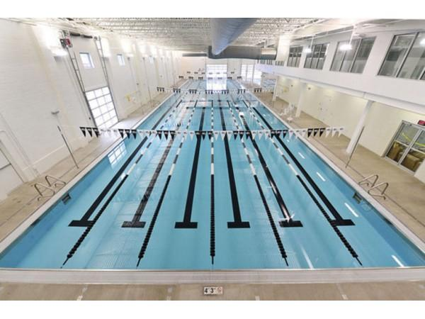 Chinese Olympic Swim Team Trains In Norwalk For Rio Olympics Norwalk Ct Patch