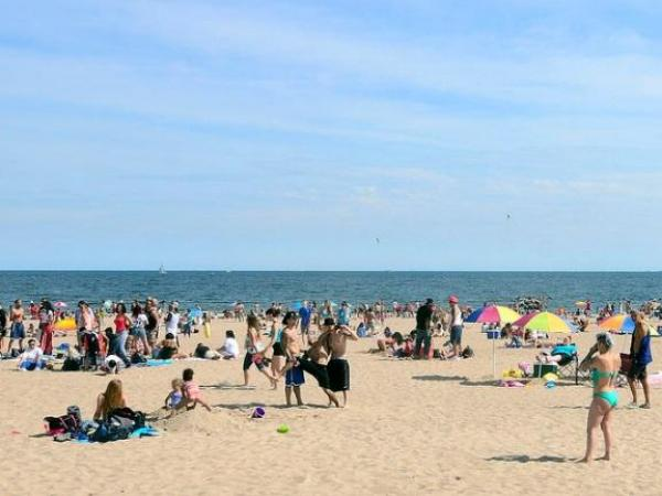 Parts of Coney Island beach closed after shark sightings