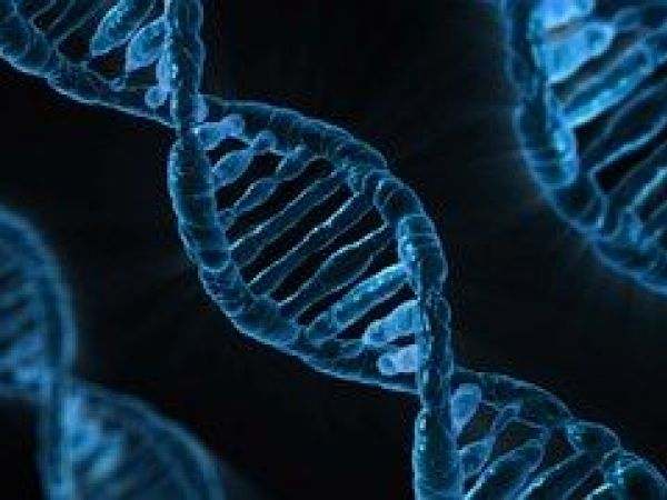Hair Could Soon Be Used To Identify People, Similar To DNA