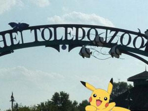 Two people climb over Toledo Zoo fence for Pokemon GO