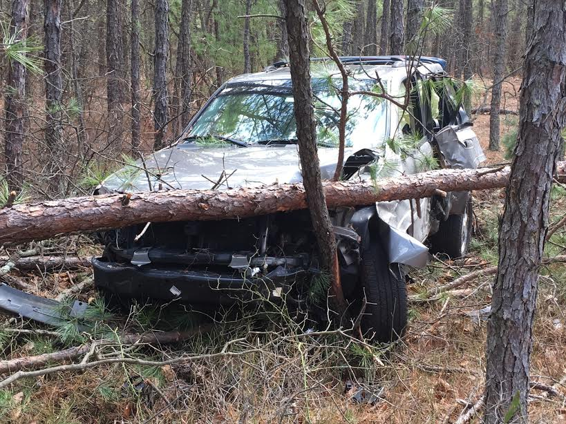 New Jersey Car Crash In Woods