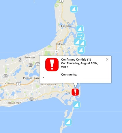 Great White Shark Sighting 2 Cape Cod Beaches Closed  Plymouth