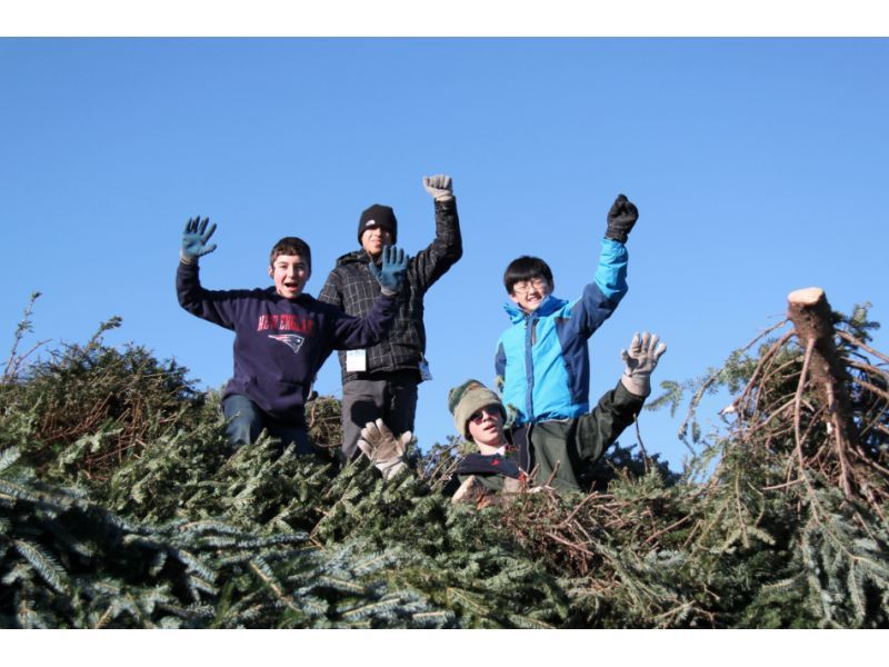 Winchester Boy Scout Troop 507 Holds Annual Christmas Tree Pick Up ...