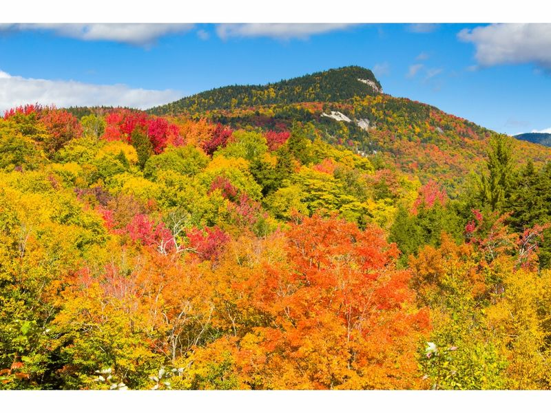 New england fall foliage 2017 when do the leaves change for When will the leaves start changing 2017
