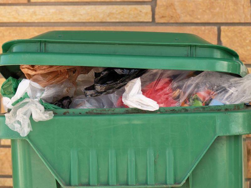 Baltimore City Plans Household Hazardous Waste Drop Off Days  - Baltimore City Christmas Tree Pickup