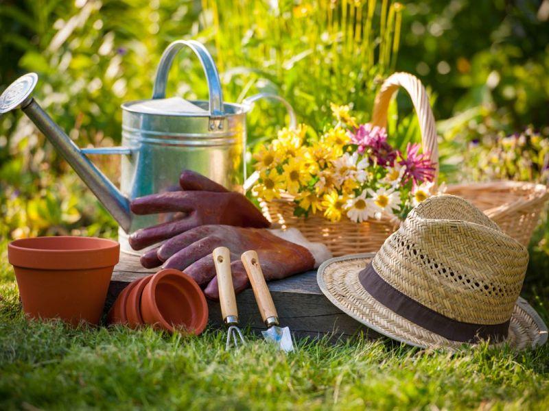 Rutgers Master Gardeners To Offer Spring Gardening Workshop
