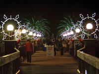 Largo fl patch breaking news local news events - Largo botanical gardens christmas lights ...