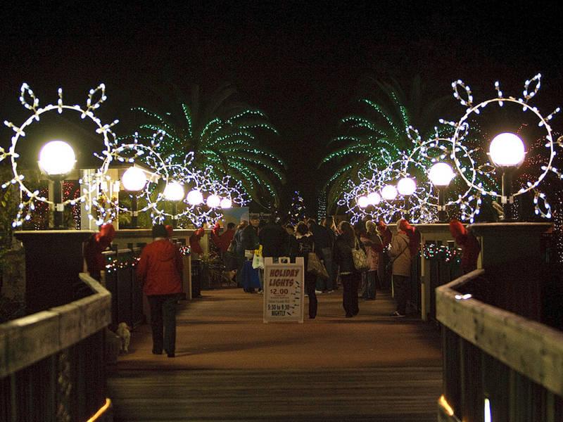 Botanical Gardens Seeks Volunteers For Holiday Lights Largo FL
