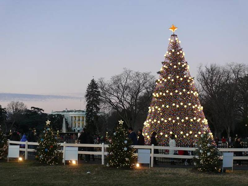 Dc Christmas Tree Part - 33: How To Score Tickets To The 2017 National Christmas Tree Lighting