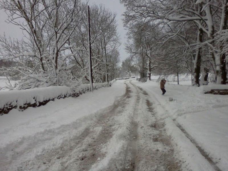 Timberton Rhode Island Forecast