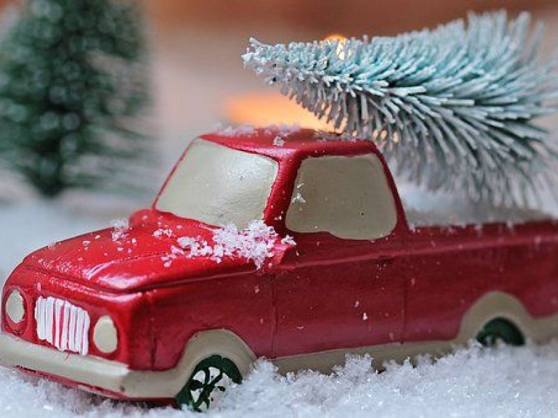 Baltimore Public Works Will Recycle Christmas Trees Into Mulch  - Baltimore City Christmas Tree Pickup