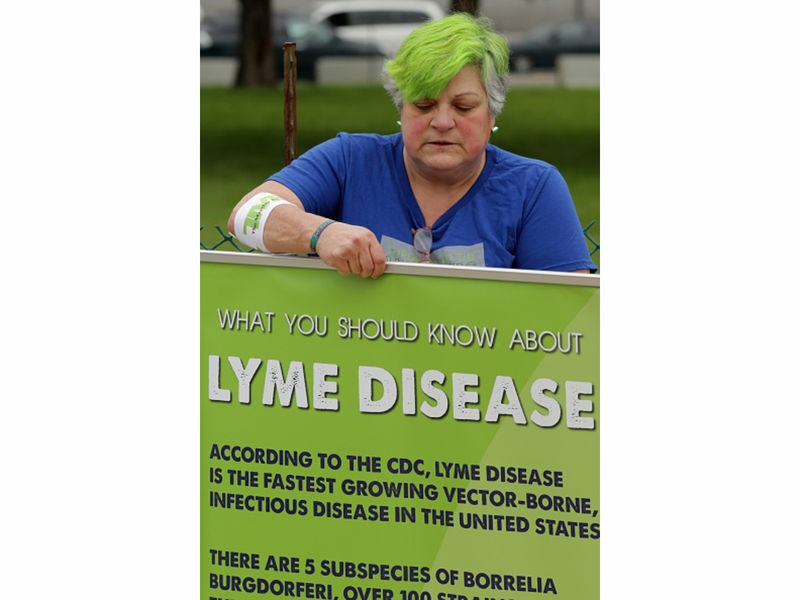 Texas Lyme Disease Cases Dwindling While National Numbers Rise