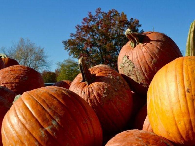 Montgomery County Restaurants Open Thanksgiving